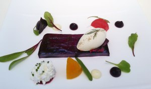 beetroor-terrine