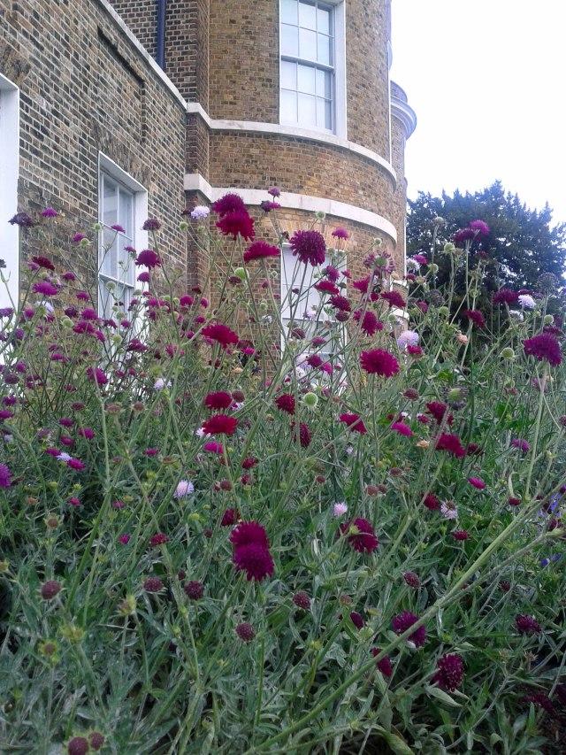 wm-garden-front