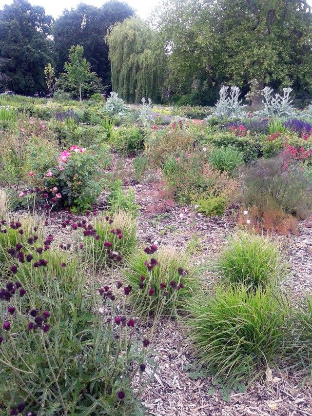 wm-garden