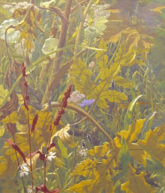 Undergrowth,-Elliot-Hodgkin